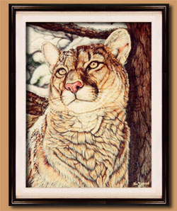 Color Art for Sale By Wisconsin Wildlife Artist Jim Tostrud
