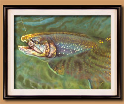 On the Fly Color Art for Sale By Wisconsin Wildlife Artist Jim Tostrud
