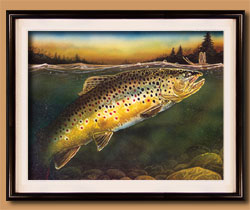 On the Rise Color Art for Sale By Wisconsin Wildlife Artist Jim Tostrud