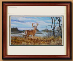 Ridge Runner Color Art for Sale By Wisconsin Wildlife Artist Jim Tostrud