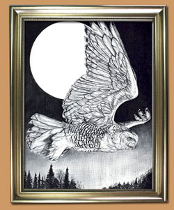 Snowy Night Unique Black and WHite Pencil art for Sale By Wisconsin Wildlife Artist Jim Tostrud