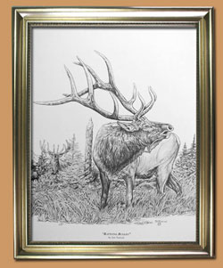 Battling Bugles Unique Black and WHite Pencil art for Sale By Wisconsin Wildlife Artist Jim Tostrud
