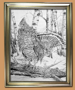 Morning Music Unique Black and WHite Pencil art for Sale By Wisconsin Wildlife Artist Jim Tostrud