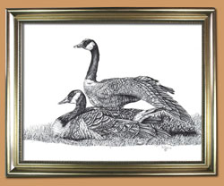 Partners For Life Unique Black and WHite Pencil art for Sale By Wisconsin Wildlife Artist Jim Tostrud