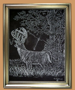 The Bow Hunter Unique Black and WHite Pencil art for Sale By Wisconsin Wildlife Artist Jim Tostrud