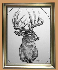 The King Unique Black and WHite Pencil art for Sale By Wisconsin Wildlife Artist Jim Tostrud
