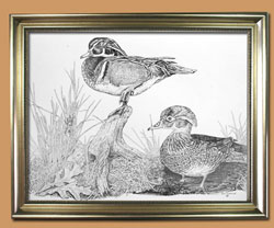 Woody and the Lady  Unique Black and WHite Pencil art for Sale By Wisconsin Wildlife Artist Jim Tostrud