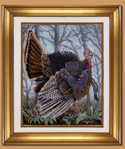 Full Strut Color Art for Sale By Wisconsin Wildlife Artist Jim Tostrud