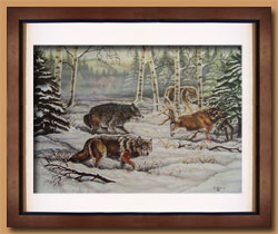 The Stand Off Color Art for Sale By Wisconsin Wildlife Artist Jim Tostrud